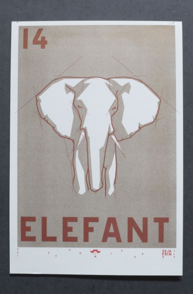 14 Elefant